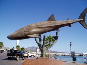 Whaleshark sculpture on Loreto waterfront