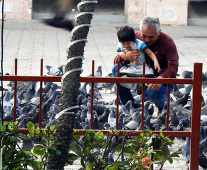Man and boy feeding pigeons in square at Mazatlan