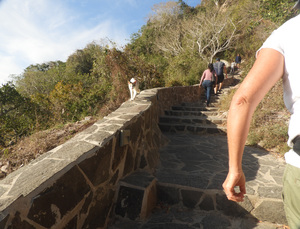 Trail up to El Faro lighthouse, with cat