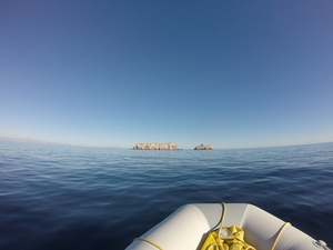 Approaching Los Islotes in dinghy